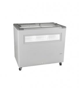 Fricon Ice Cream Conservator HCE 305 FG